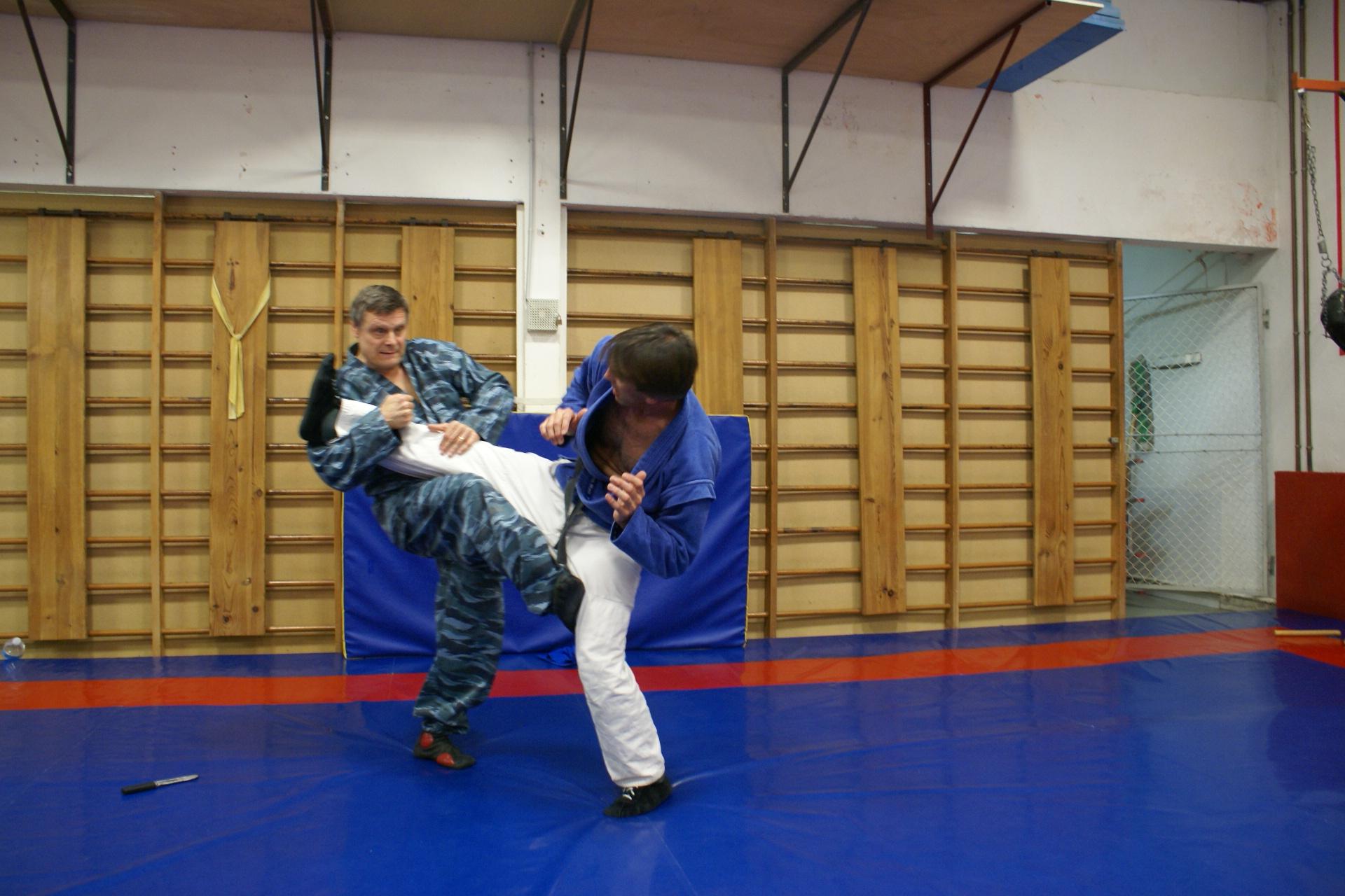 Systeme a sport de combat